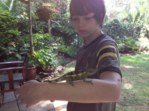 Real Live Science! Ben finds a specimen for us to observe, study, and release.